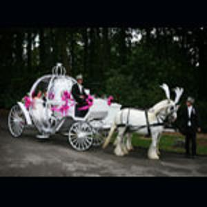Cinderella Pumpkin Carriage Birmingham 2 with white Horses.jpg