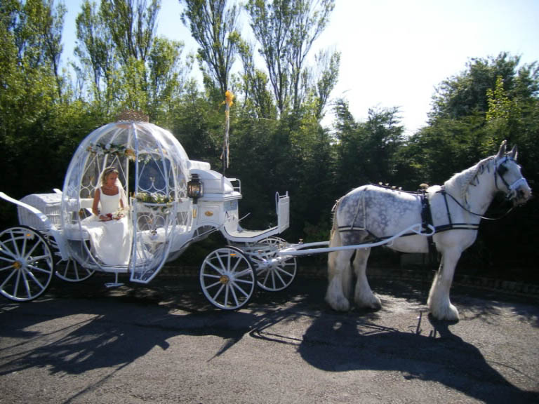 Cinderella-Glass-Pumpkin-Carriage-Blackpool.jpg