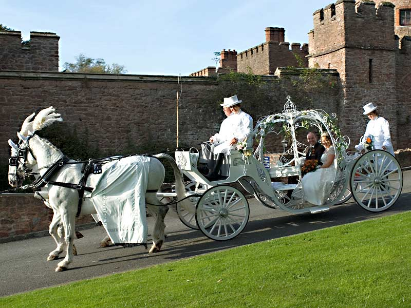 Cinderella-Glass-Pumpkin-Horsecarriage-hire-Birmingham.jpg