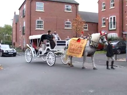 Indian-Wedding-Horse-and-Cart.jpg