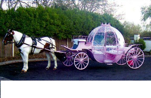 Pink-Cinderella-Glass-Wedding-Carriage.jpg